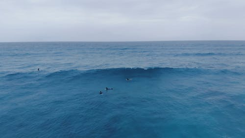 Surfers Ring The Waves`Of The Sea