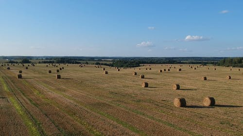 Aerial Footage Of Landscape Of Cropland With Barrels Of hay Harvested From The Field