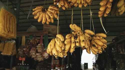 Bananas Hanging
