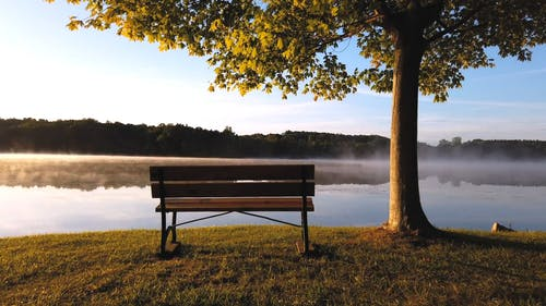 A Wooden Bench Besides A Foggy Lake
