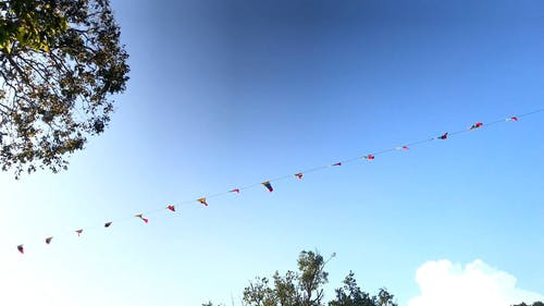String Of Flags On Display For A Parade