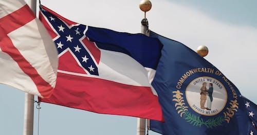白天的旗帜视频