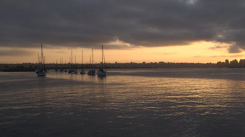 Sailboats Resting On A Marina Bay