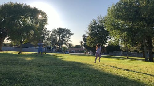 Kids Enjoy Playing Frisbee And Running Around The Grass In A Park