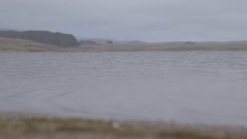 Footage Of A Flowing River