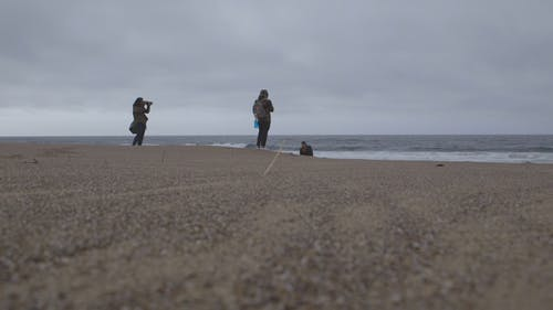 Low Angle Shot Of Photographers  Taking Pictures By The Shore