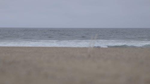 Video Of Seashore During Daytime