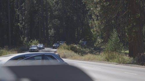 People In Motor Vehicles In Road Travel