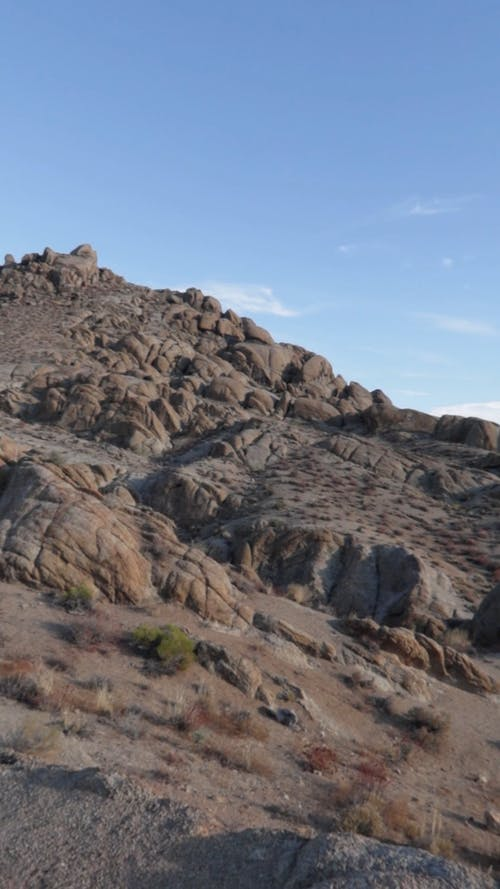 View Of The Arid Terrain Of The Desert