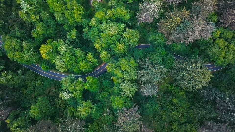 From Above Footage Of A Road Zigzagging Around Lush Vegetation Of A Forest