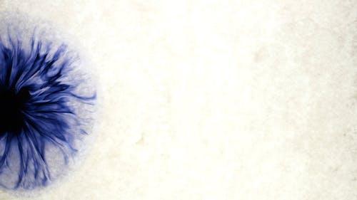 추상적 인 이미지를 만들기 위해 맑은 물에 파란색 액체를 떨어 뜨리기