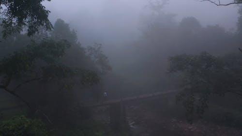 A Jogging Man Crosses A Walk Bridge On A Foggy Morning