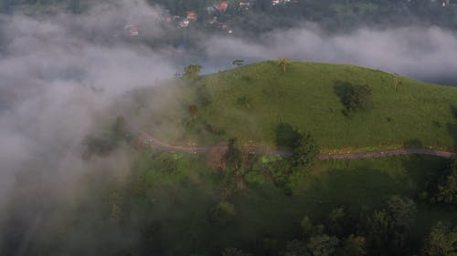 Aerial View Of A Person Jogging On The Road Surrounded By Lush Vegetation In The Mountains On A Foggy Day