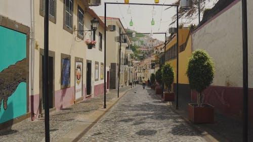A Narrow Road Mane Of Bricks And Cobblestones
