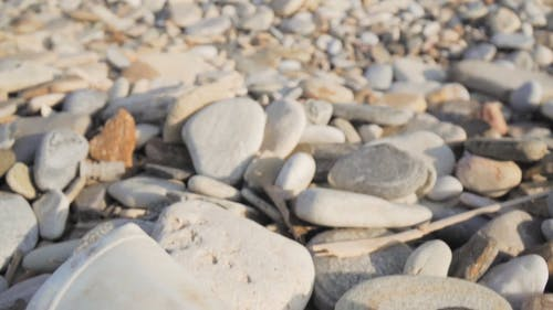 Waste Material Lying Over Pebbles Rock