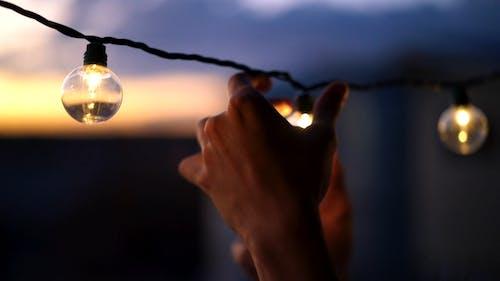 在一系列电线中固定灯泡