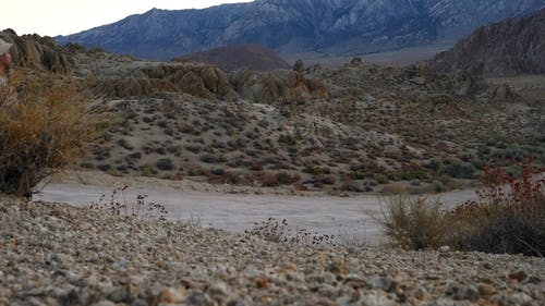A Man Walking In The Desert