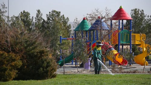 A Gardener Watering The Grass In A Playground