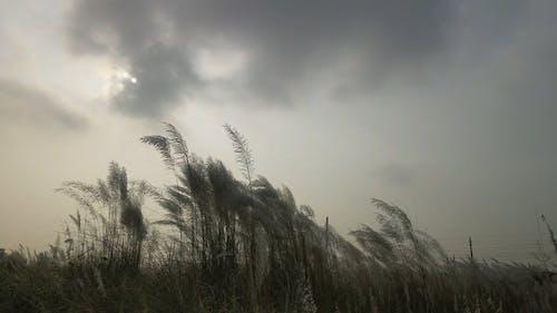 A Beautiful Natural Scenery Under A Dark Sky