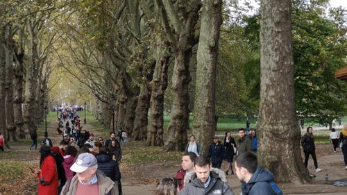 People Gathering In A Park In London