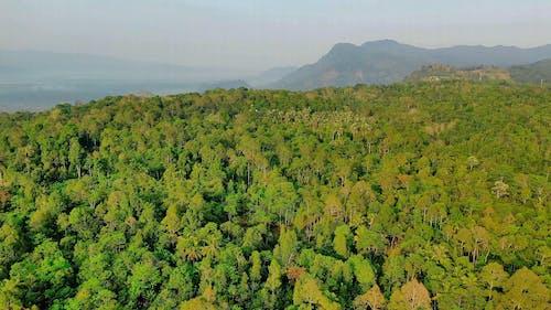 印度尼西亚农村的无人机画面