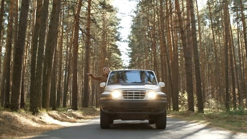 A Woman Leaning Out From A Jeep's Window Enjoys The Forest Scenery