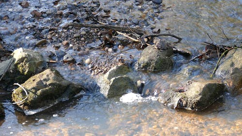 Rocks Breaking The Smooth Water Flow Of A Brook