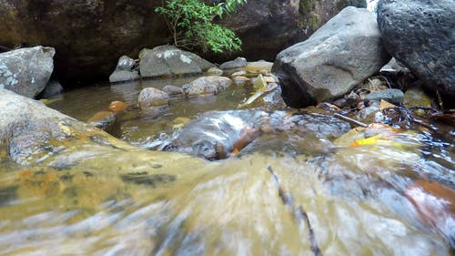 A Narrow River Streaming In A Bed Of Rocks