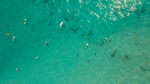 A Group Of Surfers On The Sea Waiting For Waves To Ride