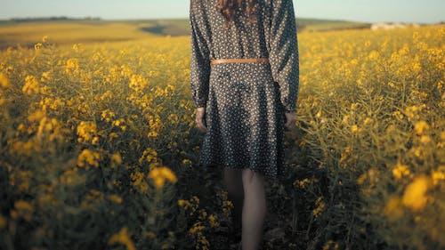 Achterkant Van Een Vrouw Die Op Een Gebied Van Bloemen Loopt