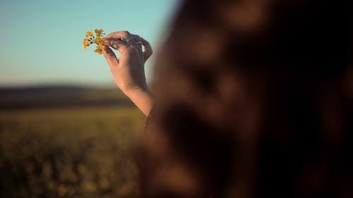 摘んだ花を指で転がして遊ぶ女性