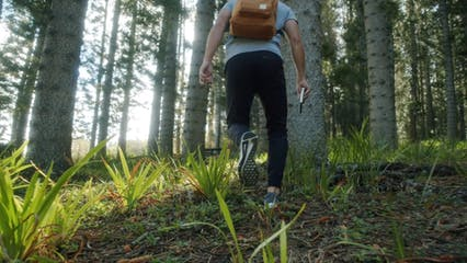 Man Hiking In The Woods