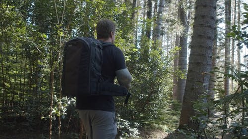A Man With a Backpack Hiking A Forest