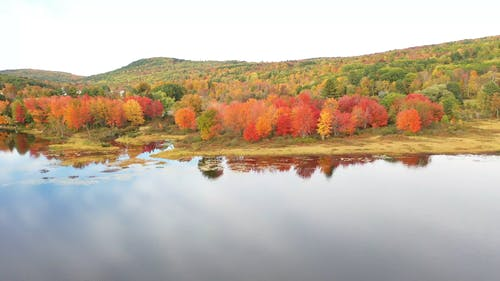 Autumn Trees At The Foot Of A Mountain And By The Lake