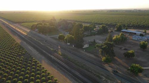A Highway Cutting Through An Almond Tree Plantation
