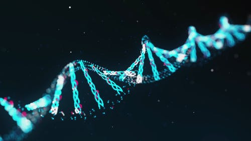 Digital Formation Of A DNA In An Animated Presentation