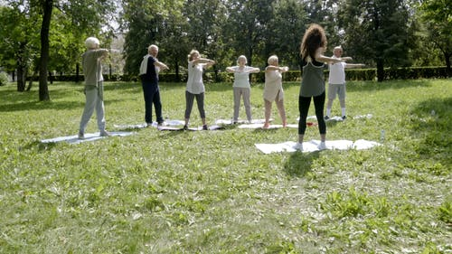 Group Of Elderly People Exercising In A Park