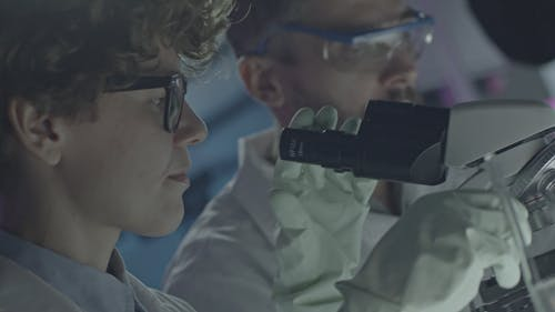 A Woman Of Science Looking Through A Microscope