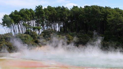 Hot Springs Resort Beside The Forest