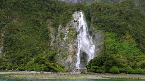 Dağ Ormanı Kayalığından şelaleler