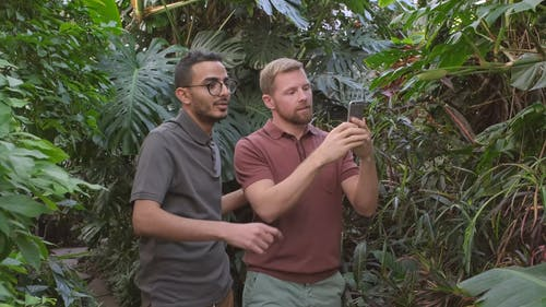 Two Men Enthusiastically Taking Photos Of Plants In A Botanical Garden Using A Smartphone