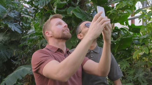 Two men Taking Pictures Outdoor