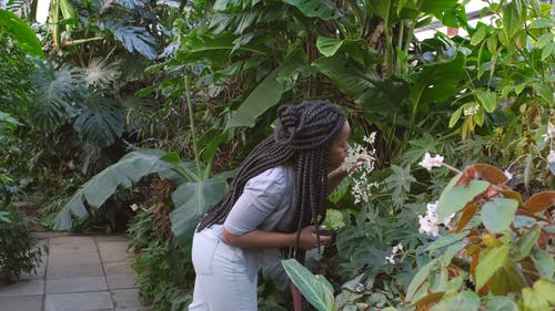A Woman Smelling Flowers And Taking Pictures Of It Inside A Greenhouse