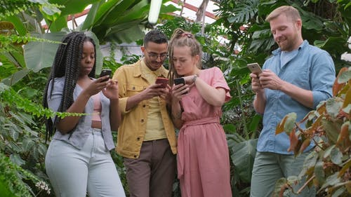 A Group Of People Busy Using Their Cellphones Inside A Greenhouse