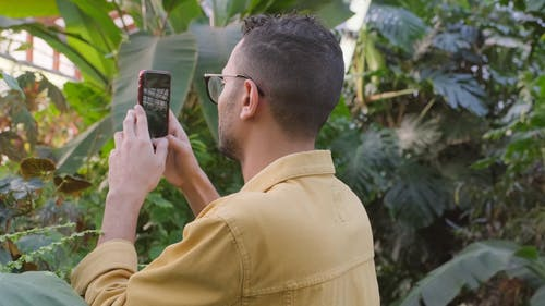 A Man Video Recording The Plants In A Greenhouse Using A Smartphone