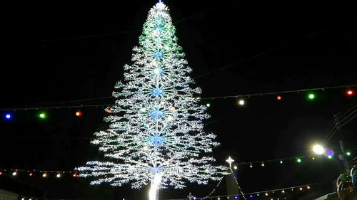 A Giant Christmas Tree In A Public Display In Celebration Of The Christmas Season