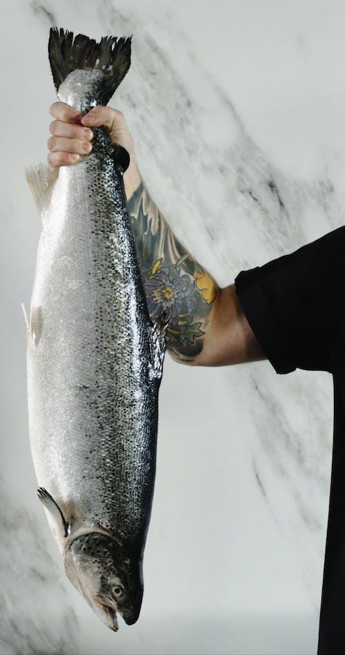 Eine Person, Die Einen Lachsfisch Vom Schwanz Hält