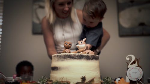 A Boy Celebrating His Birthday With An Animal Inspired Cake