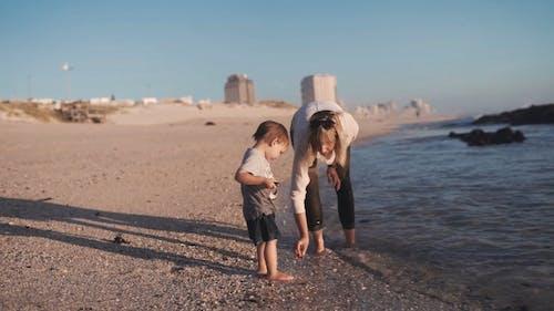 Ein Mann Und Sein Kleinkindsohn Sammeln Steine Entlang Der Strandküste
