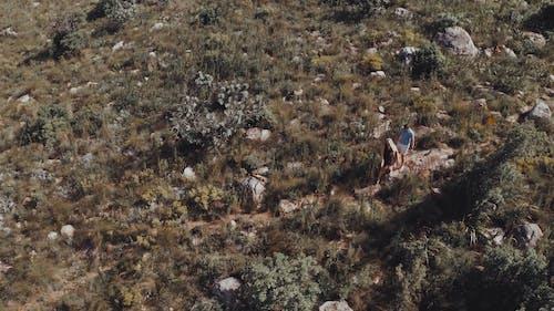 Aerial Footage Of People Walking